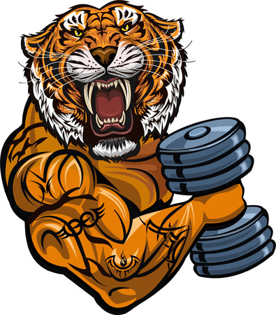 Saber-toothed tiger. Weightlifting power sport. Fitness gym Illustration