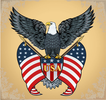 American eagle perched on USA shield and flags with a grungy background.
