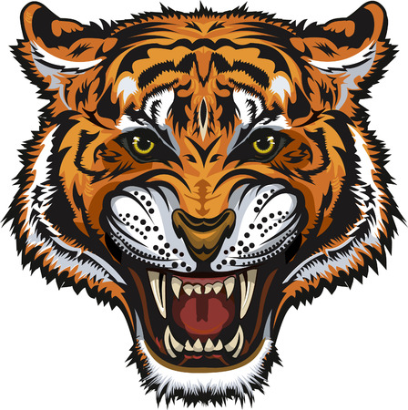 Tigers face.Saber-toothed tiger.