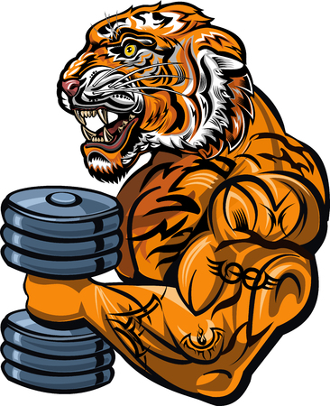 Saber-toothed tiger. Weightlifting power sport. Fitness gym Çizim