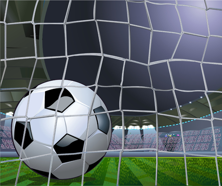 Soccer Ball and net Ilustrace