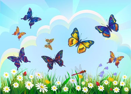 summer spring field on background blue sky with sunshine and a flying butterfly 向量圖像