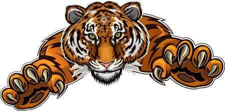 Retrato de bello rostro de tigre. Abrigo de piel a rayas. Tiger Jump. Tatuaje Ilustración de vector