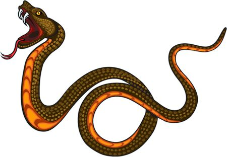Viper snake. Colorful Tattoo design Illustration