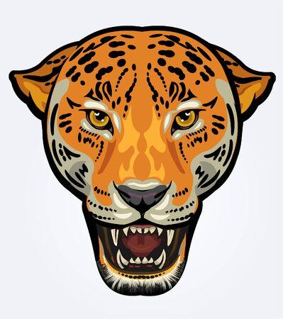 Portrait of Jaguar. Angry face of Big cat