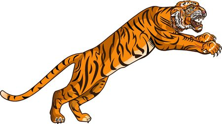 Angry Tiger Jump. Color Tattoo  Illustration