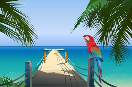 Red parrot macaw. Tropic yacht pier