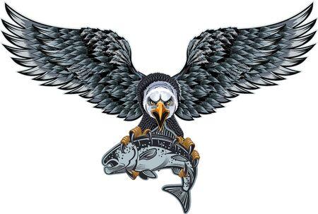 Bald Eagle flies just after grabbing a fish