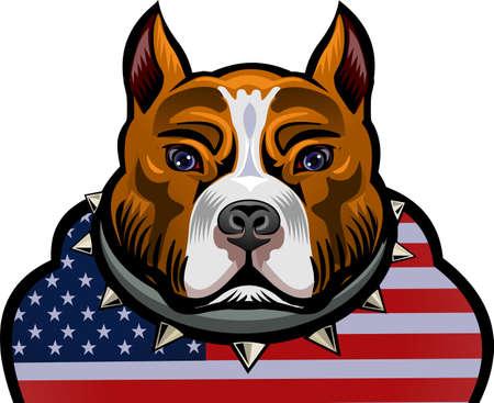 muscle athletic body of pitbull dog  イラスト・ベクター素材