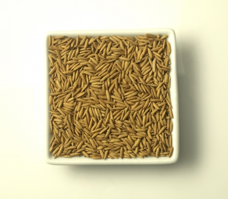 paddy jasmine rice on white background