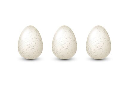 White realistic vector quail eggs with speckles isolated for egg product ad or poster. Isolated illustration.