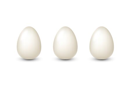 White realistic eggs isolated for egg product ad or poster. Vector illustration. Ilustração