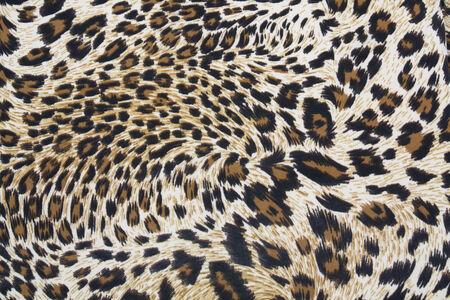 Tiger strip texture photo