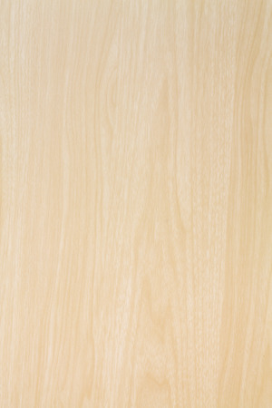 High resolution blonde wood texture 免版税图像