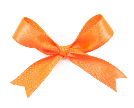 includes: Orange satin gift bow ribbon, file includes a excellent clipping path