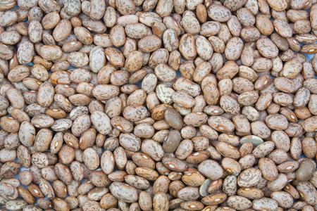 roman beans: pinto beans texture background Stock Photo