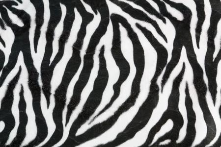 Zebra texture with beige white and black 版權商用圖片 - 43586685