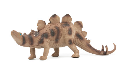 stegosaurus: Stegosaurus dinosaur isolated on white background Foto de archivo