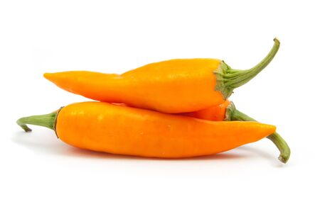 orange hot chili pepper isolated on a white background 版權商用圖片