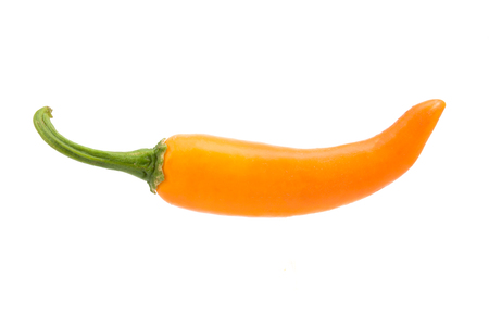 capsaicin: orange hot chili pepper isolated on a white background Stock Photo