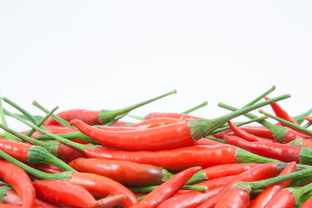 red chili pepper isolated on a white background Stock Photo