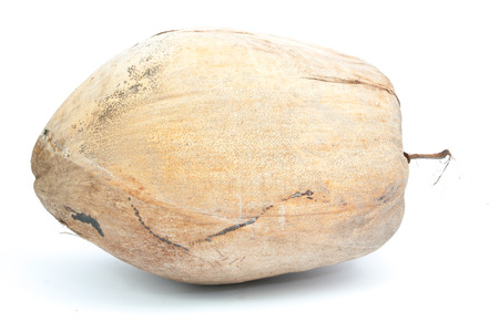 coconut in shell on white isolated