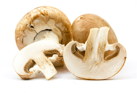 healthful: fresh champignons brown version isolated on white background