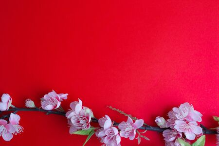 Pink plum blossom on red background.