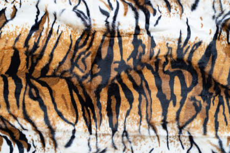 closeup real tiger texture background