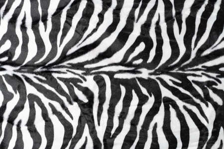 black white stripes real zebra background