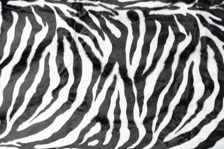 black white stripes real zebra background 版權商用圖片 - 162210975