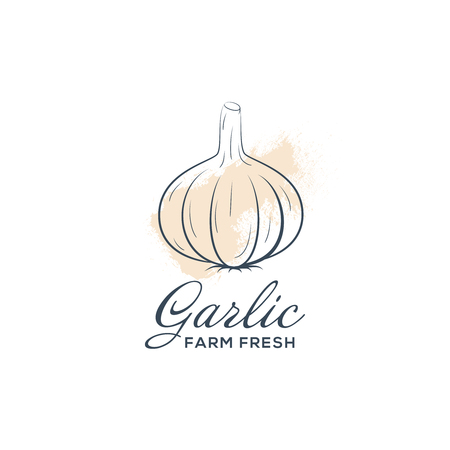 Hand drawn garlic icon. Vector badge vegetable in the old ink style for brochures and banner
