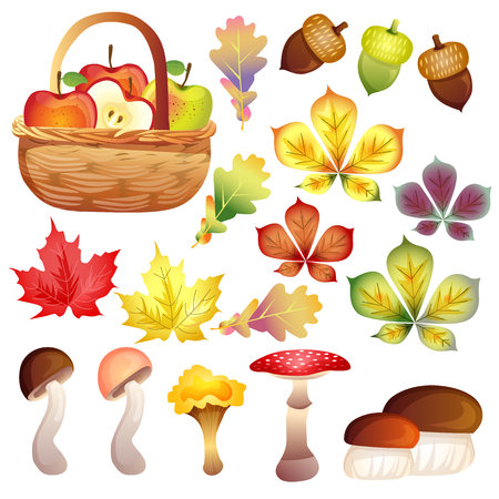 vivid autumn element set