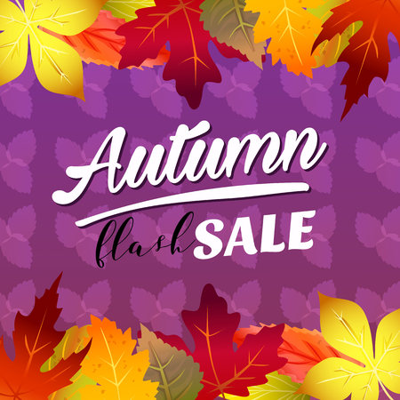 autumn flash sale vivid color forest leaves 向量圖像