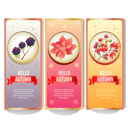 autumn banner collection with poinsettia mulberry