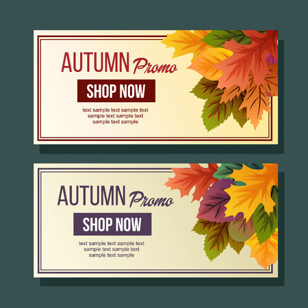 autumn promo foliage vivid leaves