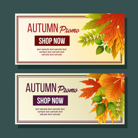 autumn promo foliage nature leaves