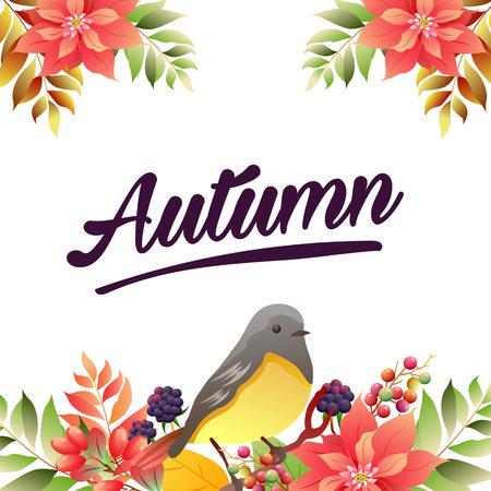 autumn poinsettia birdsong border vivid color