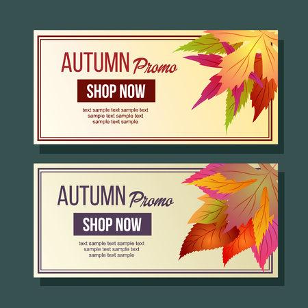 autumn promo foliageseasonal leaves