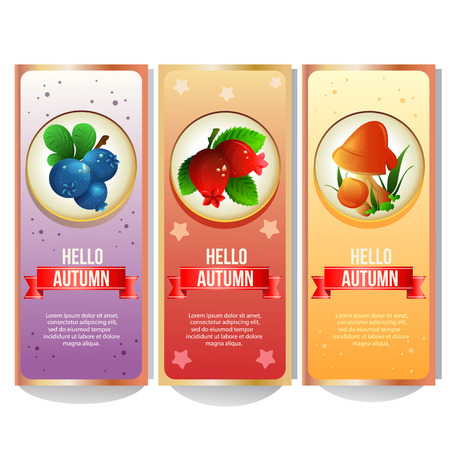 autumn banner collection with blueberry cranberry and mushroom