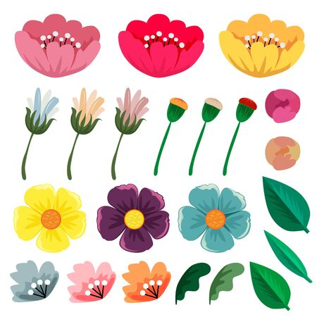 spring flower collection set vector