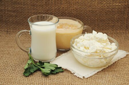 milk products: Milk, cheese and fermented baked milk. Still-life with dairy products.