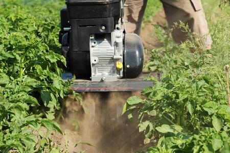 arando: Arando mini tractores de patata arado. De cerca.