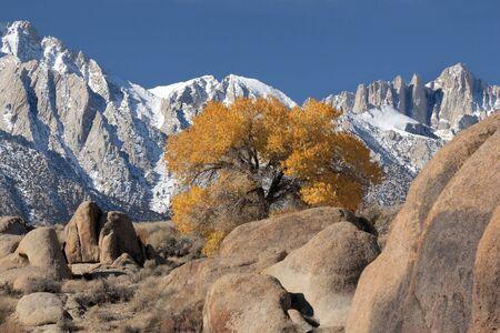 View of Mt. Whitney and the eastern Sierra's from the Alabama Hills near Lone Pine, Ca. USA Stock Photo - 402441
