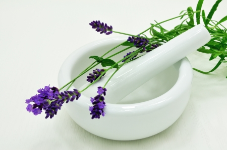 trituration: The flowers lavender with a white ceramic bowl