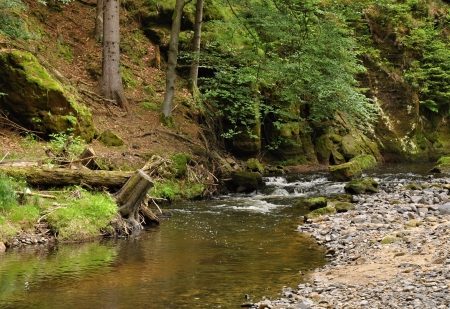 Shallow river with stones in the rocks and forest Reklamní fotografie