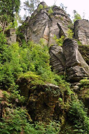 czech switzerland: Boschi verdi e belle rocce in Repubblica Svizzera Archivio Fotografico
