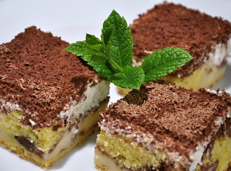 Cheese cake with grated chocolate and mint leaves photo