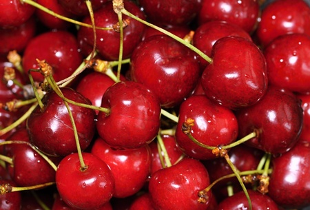 A pile of beautiful fresh ripe red cherries photo