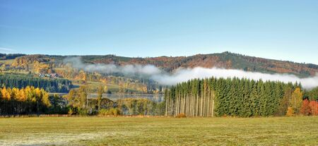 Colorful autumn forest with fog in the morning
